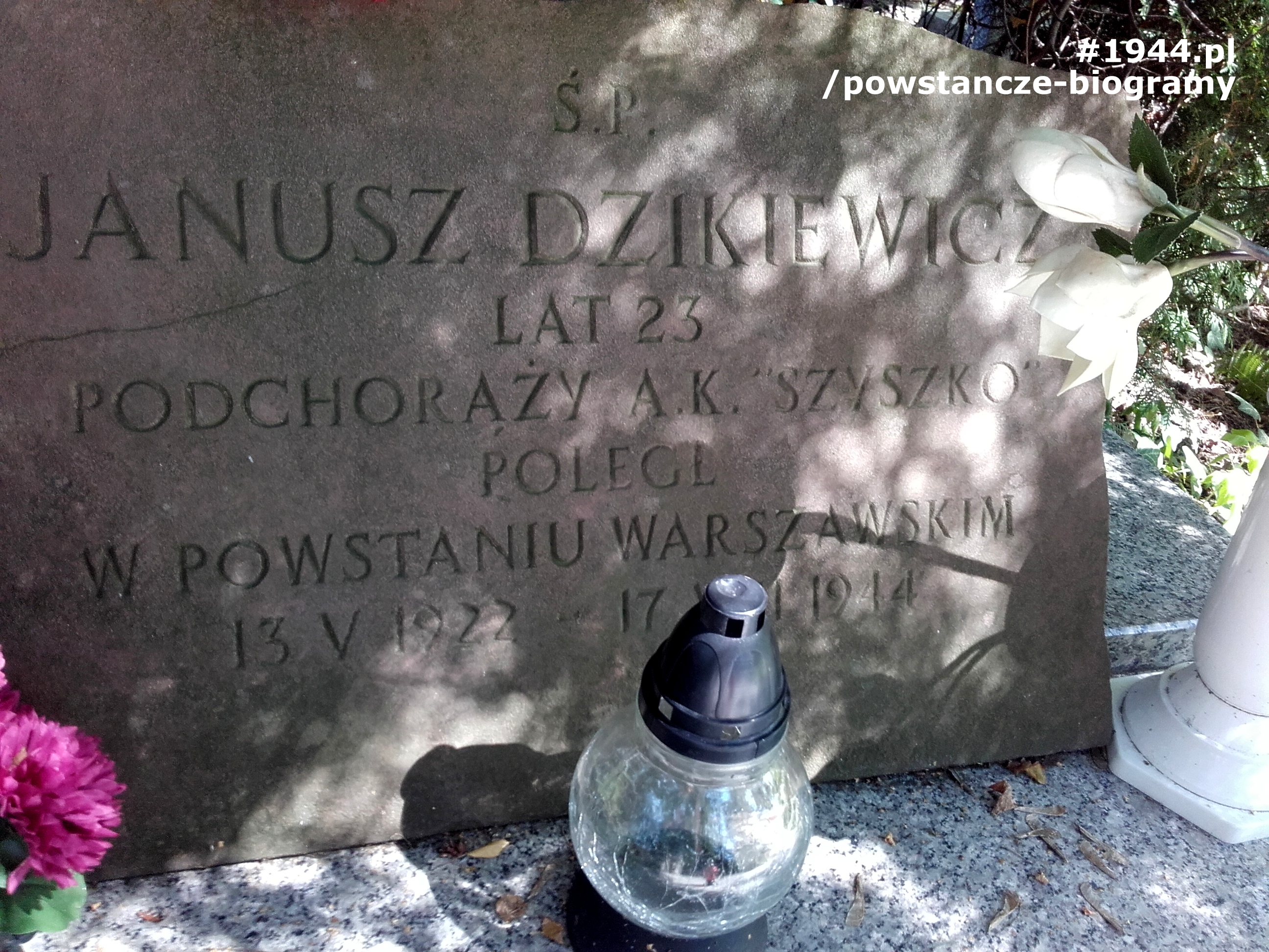 Cmentarz w Podkowie Leśnej. Fot. Mariusz Skroński.
