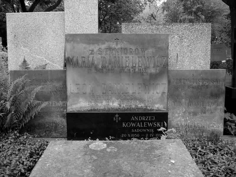 Cmentarz Powązkowski w Warszawie, kwatera 241, rząd 1, miejsce 3-4, grób rodzinny Danielewiczów. Fot. Warszawskie Zabytkowe Pomniki Nagrobne:  <i>cmentarze.um.warszawa.pl</i>