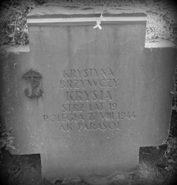 Cmentarz Wojskowy na Powązkach. Fot. udostępniła Magdalena Ciok.