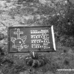 Fotografia wykonana w Warszawie w czerwcu 1945, przedstawiająca miejsce pochówku: st. strz. Stanisława Banaszkiewicza
