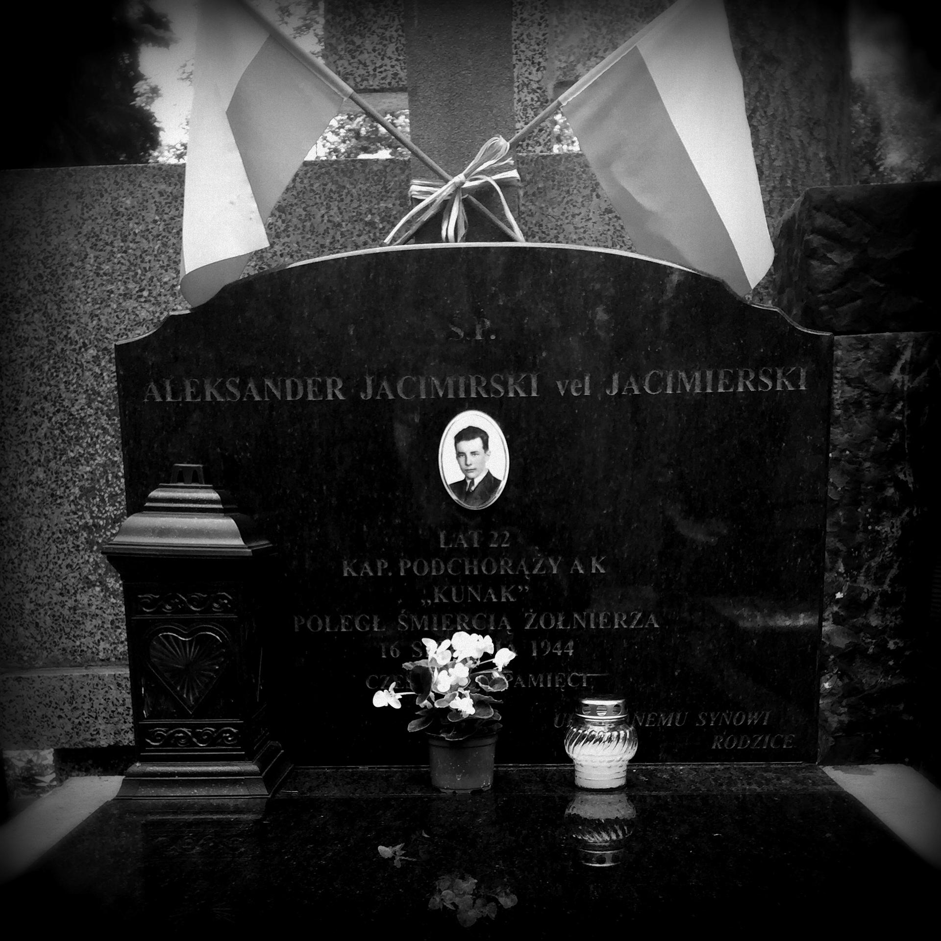 Cmentarz Wojskowy na Powązkach, kw. A25 - rząd 17 - grób 15, mogiła w której pochowany jest  Aleksander Jacimirski vel Jacimierski