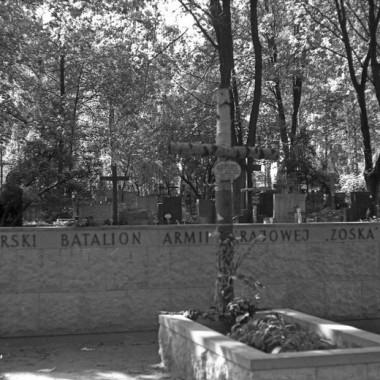 Fotografie grobów żołnierzy z bat.